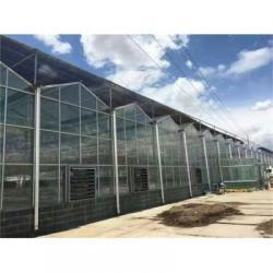 阳光板温室厂家直销-阳光板温室订制-不要错过