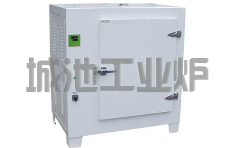 合肥城池RHJ电热烘箱